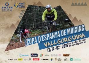 poster Vallgorguina 2016