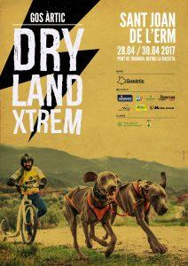 dryland_cat