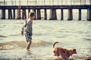Little boy at sea water with dog walking. Kid relaxing at seaside beach. Summer holidays relax.