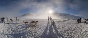 Campionat Espanya Muixing Neu Beret Gos Artic-180303-090233