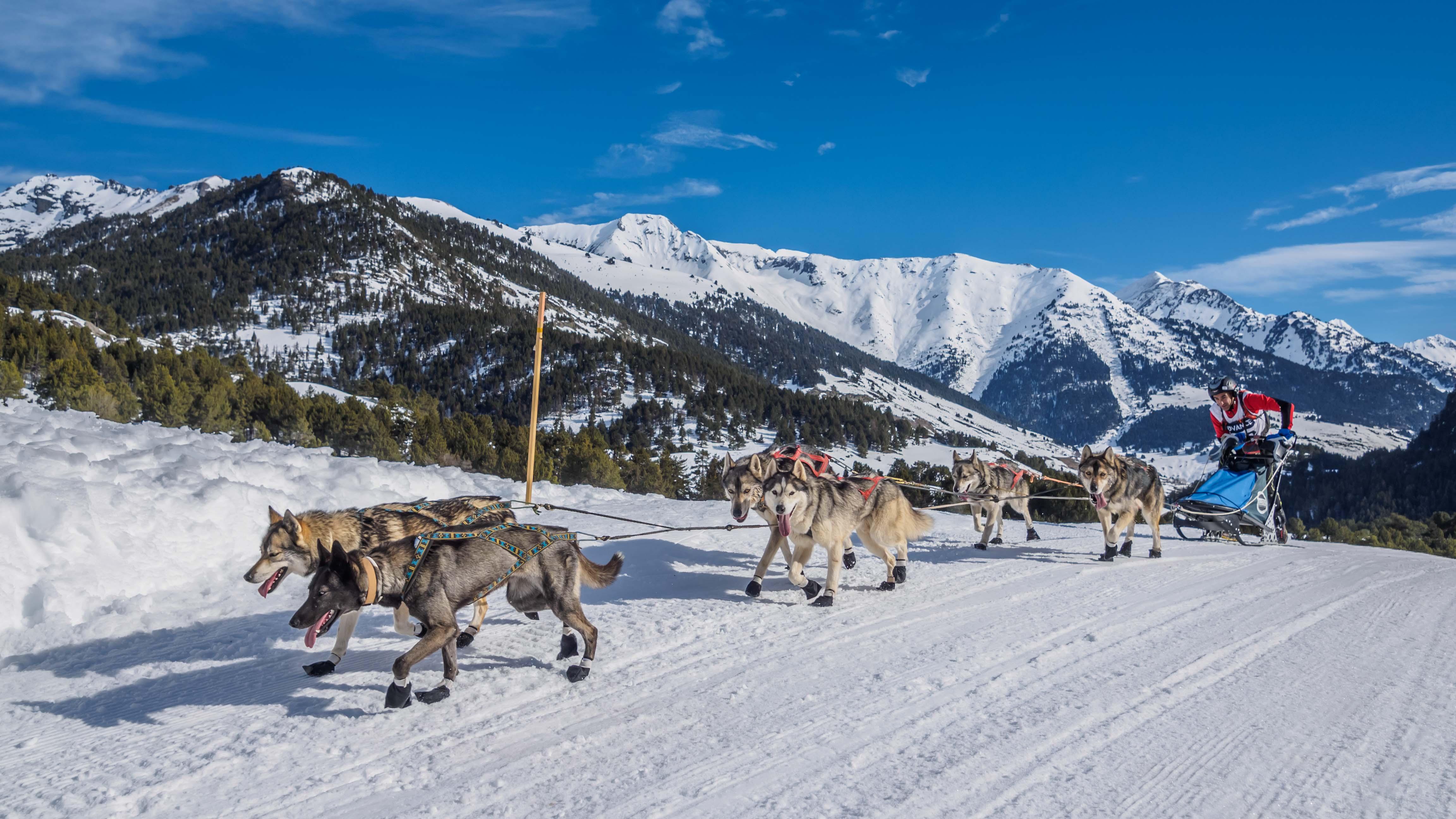 Snow Race-190218-104535-2