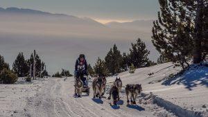 Snow Race-190221-092219